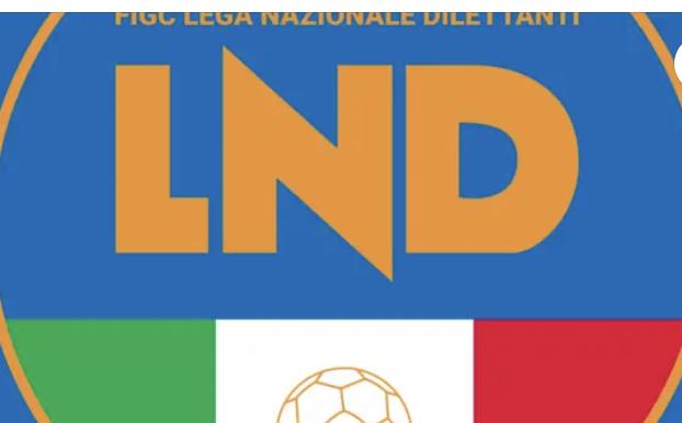 L'AVV. VIZZINO NELL'UFFICIO GIURIDICO FIGC BASILICATA